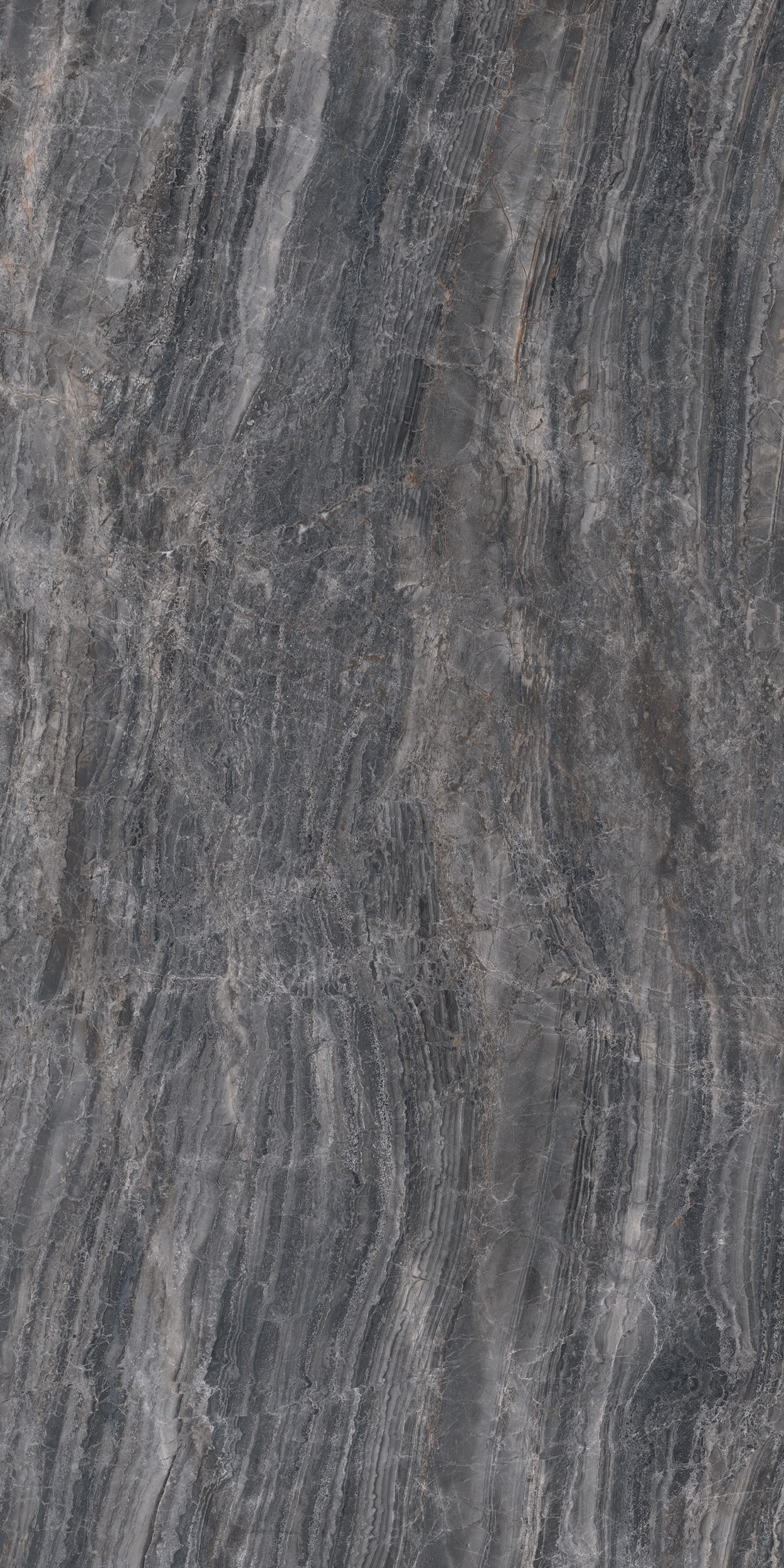 24 X 48 Cosmic Black HIGH POLISHED Rectified Porcelain Tile