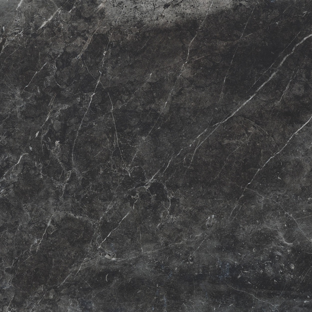 12 x 24 Evo Stone Graphite Honed finished Rectified Porcelain Tile